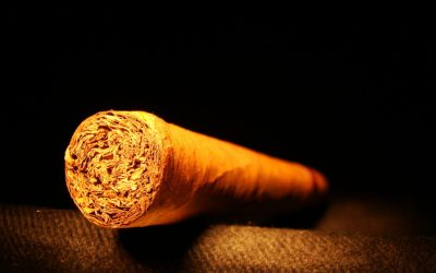 Add Some Pizazz to Your Life with a Cigar