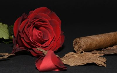 The Perfect Cigar for Valentine's Day