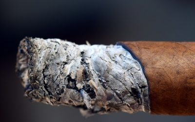 Most-Asked Cigar Questions